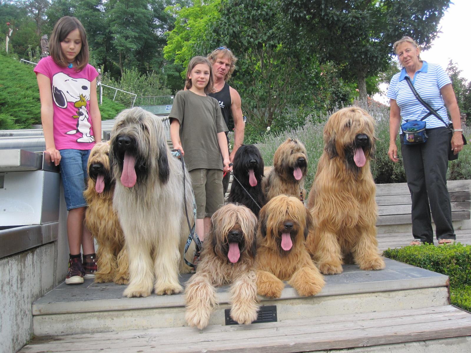 Tierpark Herberstein mit Big Teddy und Lenny den Schweizer DMDS Jungs!