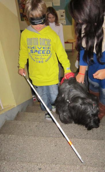 Happy DMDS – Einsatz als Therapiehund