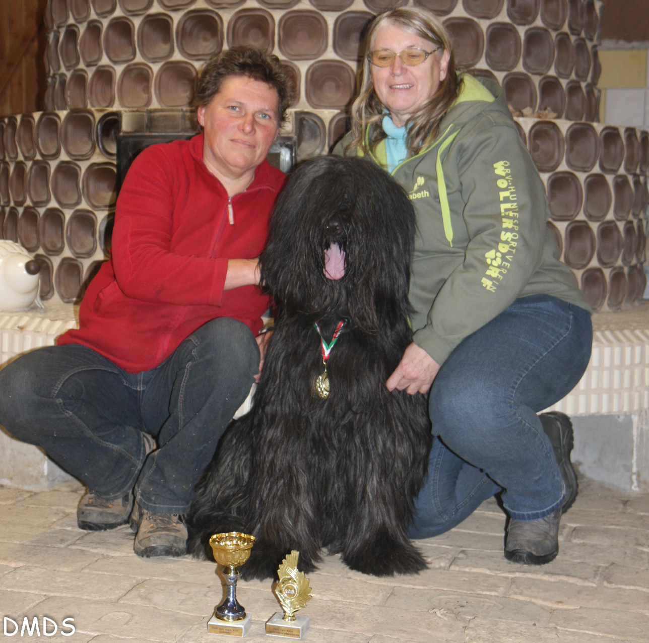 "New Year Cup – Special de Rasse ""Berger de Brie"""