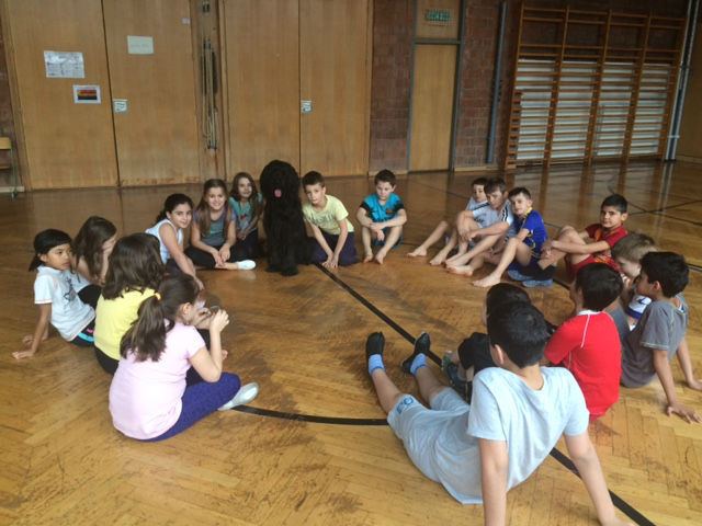 Schulhund Eeltschii DMDS im Einsatz in der Turnhalle