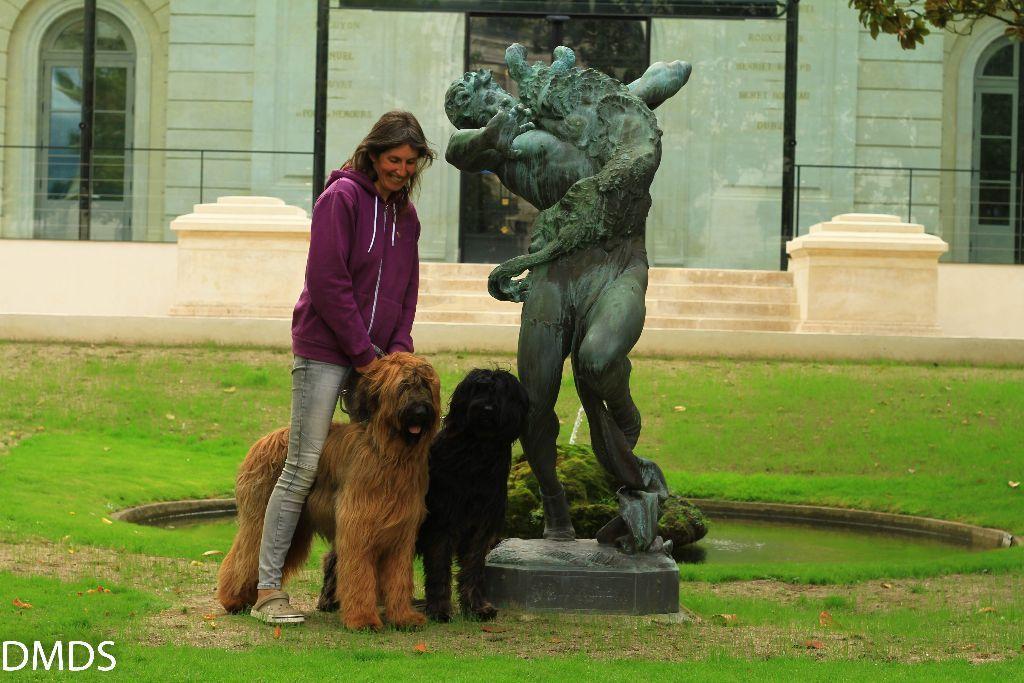 Teil 10 der Reise – Le Chien de Montargis  – Der Hund des Aubry