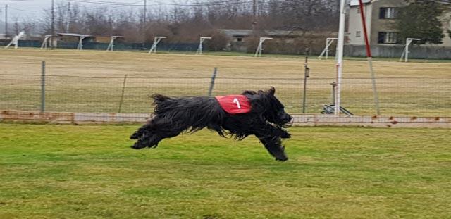 Racing Training 8/9/10.03.2019