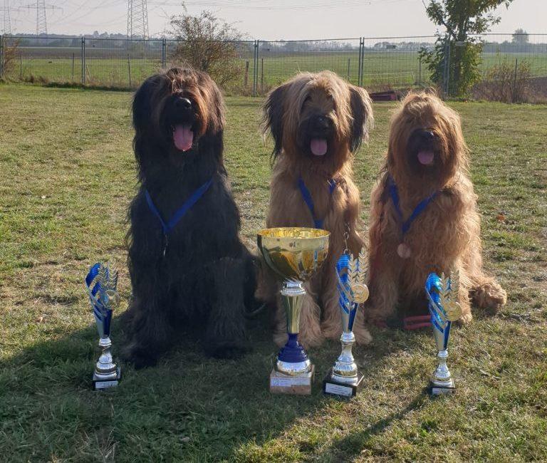 Jay Jay, Tiponi und Iowa DMDS füllen alle Siegertreppchen!