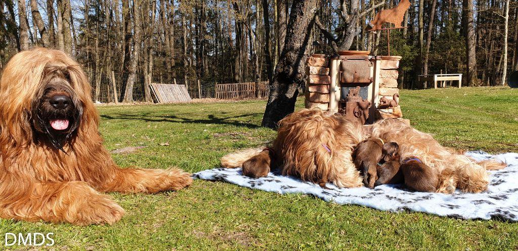 Mit Mama und Papa im Bärenwald Garten