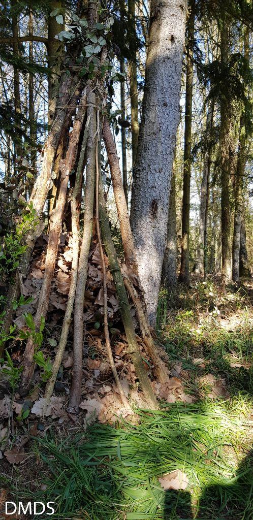 Bärenwald – Igel Anlage vergrößert