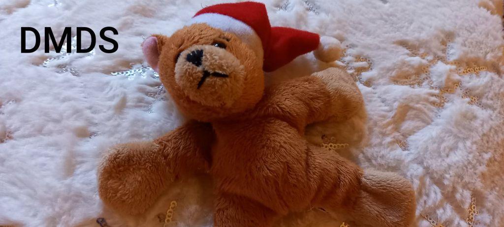 Hallo meine Putzibären!